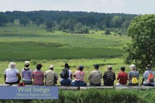 Wild Indigo flyer for summer