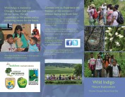 Page 1 of Wild Indigo brochure